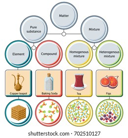 Pure substances and mixtures diagram. Educational chemistry for kids. Cartoon style vector illustration.