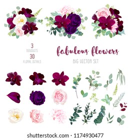 Purple garden rose, burgundy red orchid, pink and yellow rose, hydrangea, marsala anthurium, seeded eucalyptus, greenery, succulents big vector collection. All elements are isolated and editable.