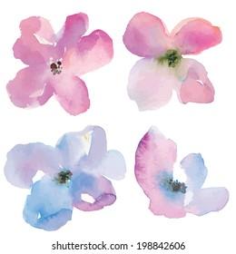 Purple Vector Watercolor Flowers