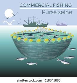 Purse seine boat encircling a school of fish, vector.