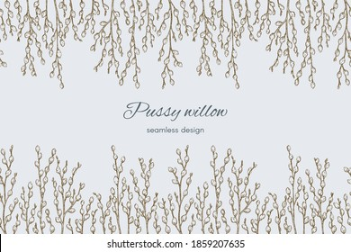 Pussy willow seamless border. Graphic doodle hand drawn sketch style. Botanical illustration for packaging, menu cards, posters, prints.