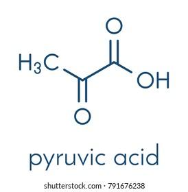 Pyruvic acid (pyruvate) molecule. Important intermediate in a number of biochemical processes. Skeletal formula.