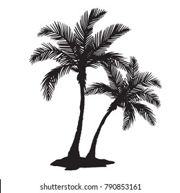 Quality detailed tropical palm tree silhouette vector with individual leaves.