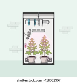 Grow Rooms Stock Illustrations, Images & Vectors | Shutterstock