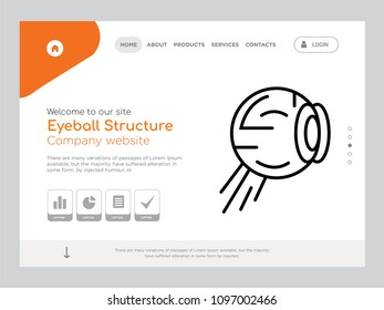 transparency of the retina images stock photos vectors shutterstock