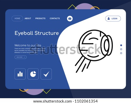 quality one page eyeball structure website stock vector royalty