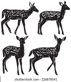 Quality set of four young deer fawns illustrated in black and white. Vector images.