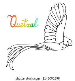 Quetzal Bird coloring book illustration. Rainbow Quetzal word. Vector illustration.