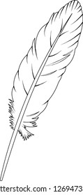 QUILL VECTOR GRAPHICS