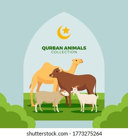 Qurban Animals Collection with Illustration of Camel, Cow, Sheep and Goat