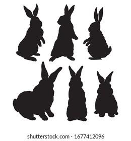 Rabbit animal silhouette, icon, vector rabbit sign symbol on white background.