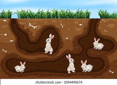 Rabbit Family Living in the Hole illustration