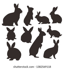 rabbit hare logo icon set