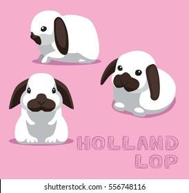 Rabbit Holland Lop Cartoon Vector Illustration