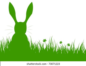 rabbit on a meadow