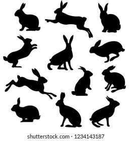 Rabbit Set Isolated, Vector Illustration