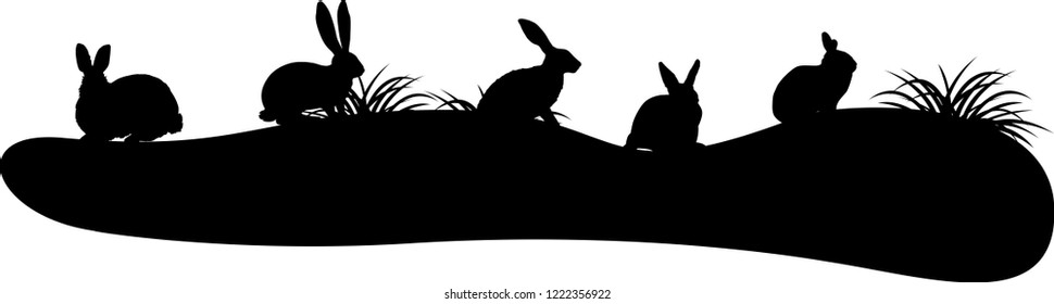 rabbit silhouette on white background