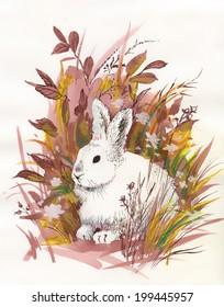 Rabbit watercolor vector