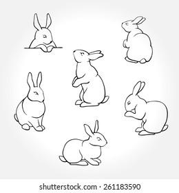 Rabbit white silhouettes
