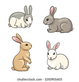 Rabbits in cartoon style. Vector illustration. EPS8