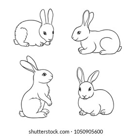 Rabbits in contours. Vector illustration. EPS8