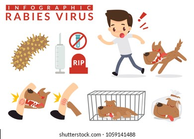 Rabies cartoon infographic. Infographic Vector illustration.