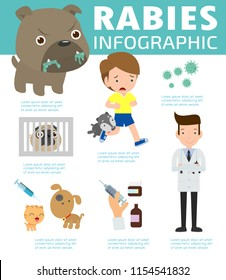 Rabies infographic, Illustration of rabies describing symptoms and medications or vaccine. cartoon Infographic Vector illustration