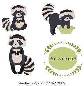 the raccon is erasing , funny raccoon