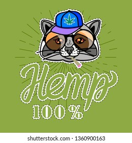 Raccoon boy in cool hip hop style. Vector for print on T-shirts and other souvenir products. Hemp lettering inscription isolated on green background.