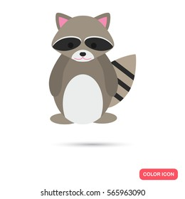 Raccoon color flat icon