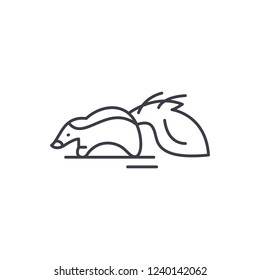 Raccoon line icon concept. Raccoon vector linear illustration, symbol, sign