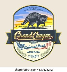 Raccoon, national Park Grand Canyon, illustration, vector