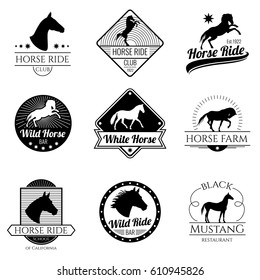 Racing horse, running mare vector vintage logos and labels set. Emblem with horse stallion, illustration of logo with mustang horse.