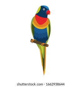 Rainbow Lorikeet parrot sitting on brunch. Colorful exotic bird from Australia in cartoon style illustration on white background.