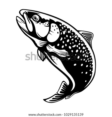 Rainbow Trout Jumping Out Water Salmon Fish Stock Vektorgrafik