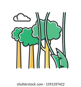 Rainforest plants and trees color icon. Evergreen forest vines. Lianas and high trees. Trip to Indonesian jungle. Discovering Bali nature. Exploring tropical flora. Isolated vector illustration