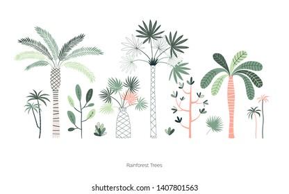 Rainforest trees hand drawn vector illustrations set. Exotic green tropic forest. Tropical plants. Botanical hawaii nature. Jungle landscape t shirt prints, poster design elements