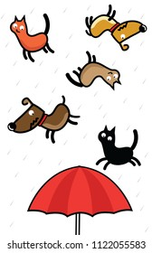 It's raining cat and dogs