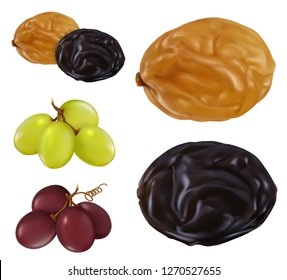 Raisin, dried grape. 3d realistic vector icon set
