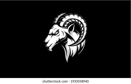 Ram head sport logo. Goat head vector