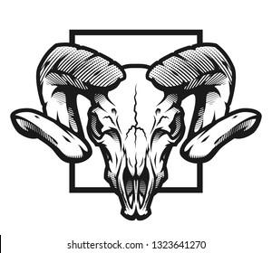 Ram skull, black and white emblem, illustration.
