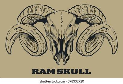Ram Skull Engraving Style