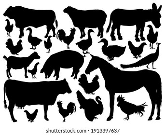 Ranch farm animals collection vector silhouette illustration isolated. Bull, cow, donkey, sheep, horse, pig, goat. Domestic poultry fowl birds: Turkey, goose, rooster, chicken, hen, duck, peacock.