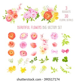 Ranunculus, rose, peony, narcissus, orchid flowers and decorative plants big vector collection. All elements are isolated and editable.