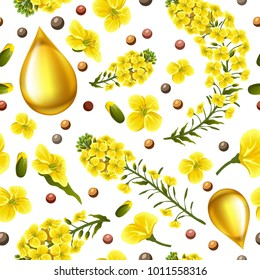 Rape seeds and flowers, canola oil. Brassica napus. Seamless vector pattern.