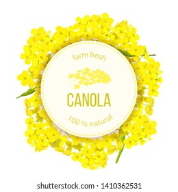 Rapeseed blossom flowers. Card template text. Round Circle badge Flowering Canola or colza. Brassica napus. Blooming rape yellow flowers. Oilplant oilbearing crop for green energy industry, rape seed