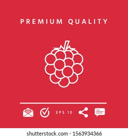 Raspberry, blackberry line icon. Graphic elements for your design