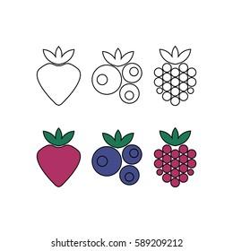Raspberry, blueberry, strawberry. Forest berries. Vector illustration