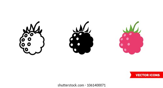 Raspberry icon of 3 types: color, black and white, outline. Isolated vector sign symbol.