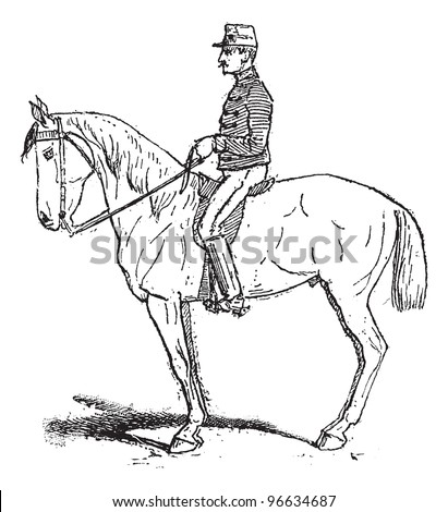 Rassembler Exercise Meant Increase Mobility Horse Stock Vector